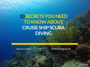 cruise diving